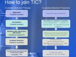 TIC Application Process