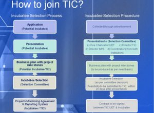 TIC Application Process