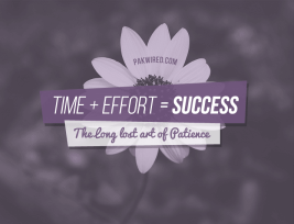Time + Effort = Success: The Long Lost Art of Patience