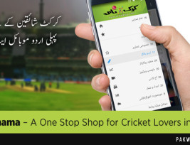 pw-cricket