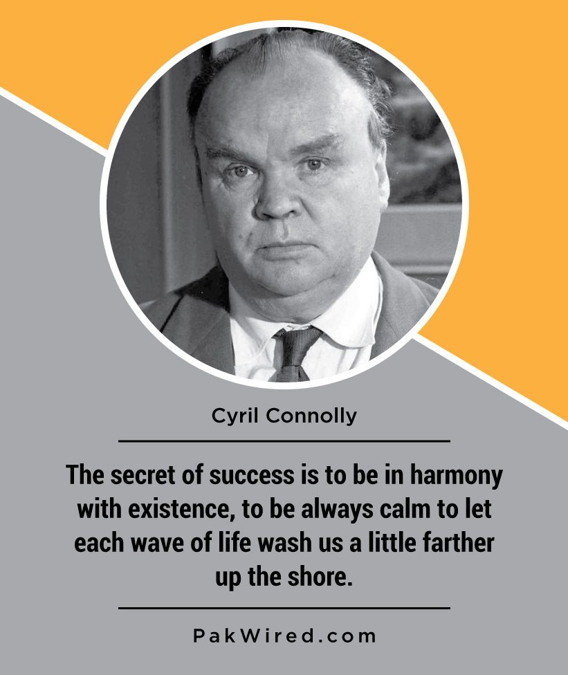 the-secret-of-success-is-to-be-in-harmony-with-existence-to-be-always-calm-to-let-each-wave-of-life-wash-us-a-little-farther-up-the-shore-cyril-connolly