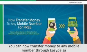 You Can Now Transfer Money To Any Mobile Number Through