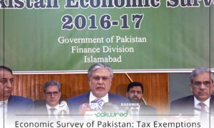 Economic Survey Of Pakistan Literacy Rate Decline From 60 To 58