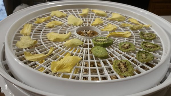 Mango slices, kiwi fruit, and banana slices on a food dehydrator
